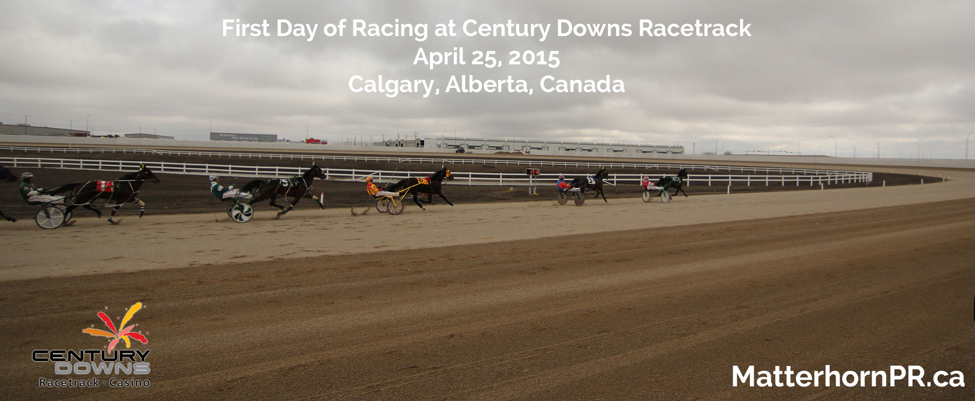 Harness Racing at Century Downs Calgary Public Relations